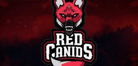 Red contrata novo técnico