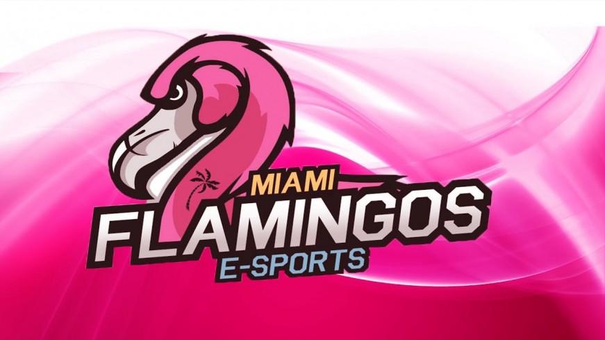 Miami Flamingos perde jogadores argentinos